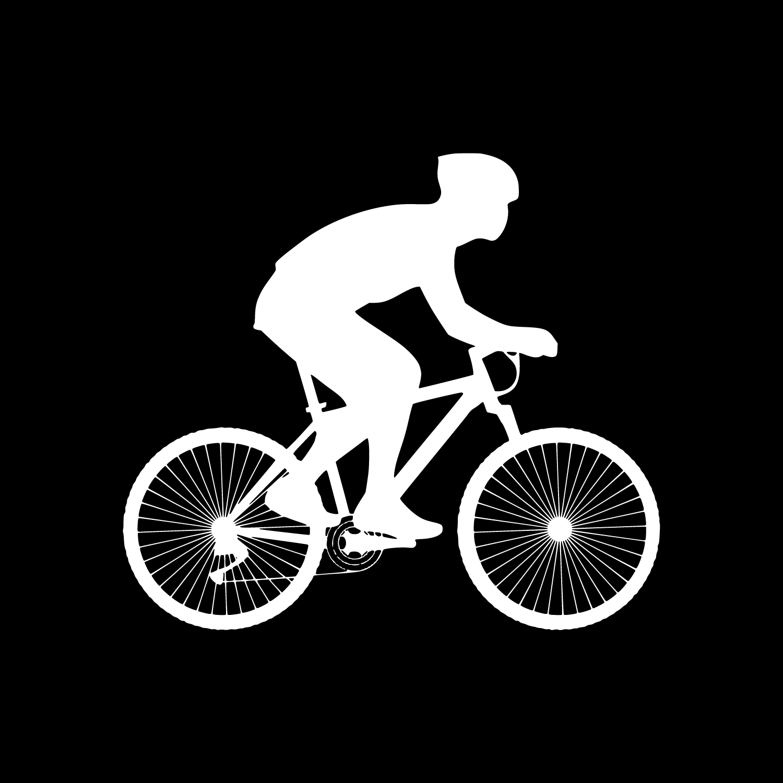 reparateur vélos grenoble